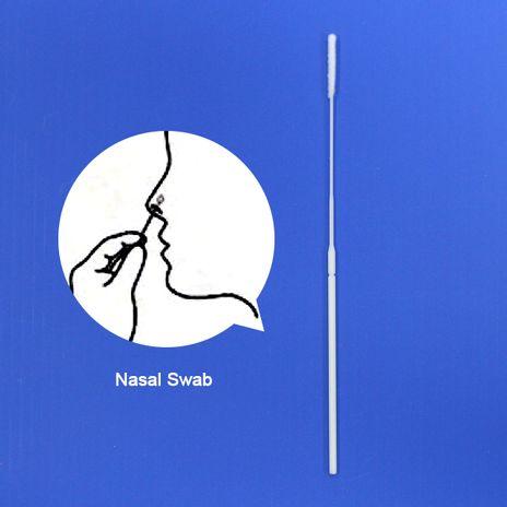Swab Flocado Nasal Nylon Estéril - Distância do ponto de ruptura 80mm (da extremidade da ponta)